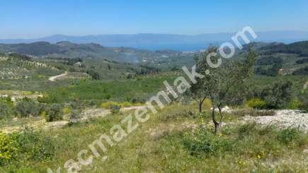 Mudanya,çepni Köyünde Deniz Manzaralı Satılık Arazi 6