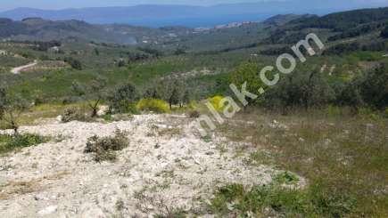 Mudanya,çepni Köyünde Deniz Manzaralı Satılık Arazi 8