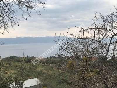 Mudanya Şükrüçavuş Mh Deniz Manzaralı Satılık Zeytinlik 23