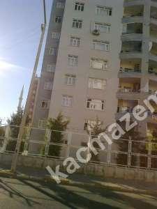 Diyarbakır Diclekente Büro -Ofis İçin Kiralık Daire 2