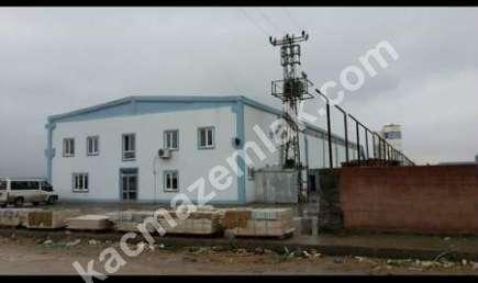 Diyarbakır Organize Sanayi'de Satılık + Kiralık Hazır 1