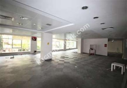 Şişli Plaza 1.000 M² Kiralık Boş Plaza Katı Kdv Avantaj 17