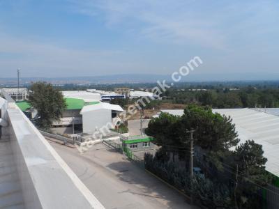 İnegöl Yeniceköy Mh Bursa Cd.1700 M²Komple Bina Kiralık 22