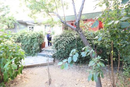 Kağıthane'de Cadde Üzeri 5+2 Çift Girişli, Bahçeli İşy 7
