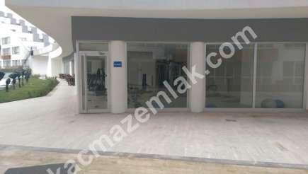 Helenium Wings Yenişehir De Acil Satılık En Uygun Fiyat 20