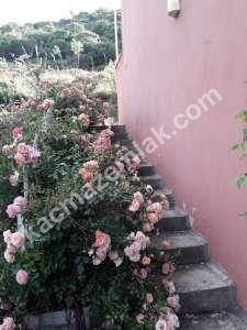 Bandırma Şirinçavuş Mah Satılık Mustakil Villa 10