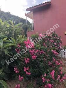 Bandırma Şirinçavuş Mah Satılık Mustakil Villa 2