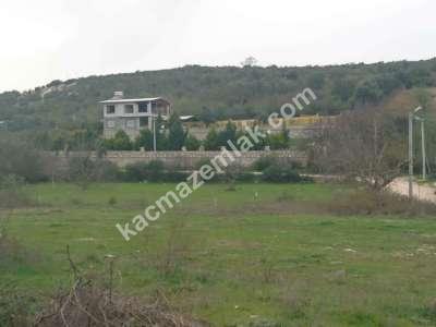 Nilüfer Hasanağa Mah Satılık Villa Arsa Köpek Çiftliği 7