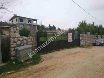 Nilüfer Hasanağa Mah Satılık Villa Arsa Köpek Çiftliği 6