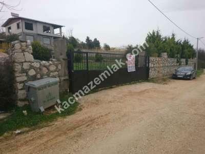 Nilüfer Hasanağa Mah Satılık Villa Arsa Köpek Çiftliği 1