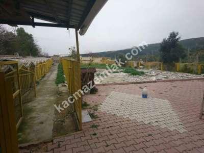 Nilüfer Hasanağa Mah Satılık Villa Arsa Köpek Çiftliği 2