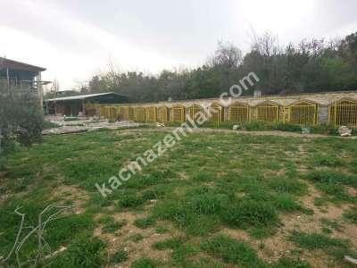 Nilüfer Hasanağa Mah Satılık Villa Arsa Köpek Çiftliği 17