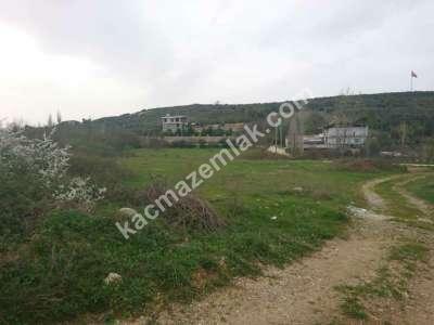 Nilüfer Hasanağa Mah Satılık Villa Arsa Köpek Çiftliği 8
