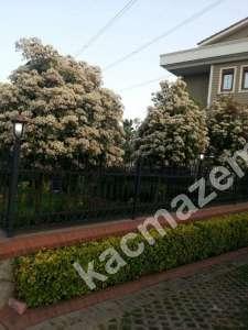 Ümraniye Atakent Satılık Müstakil Bahçeli Villa 12